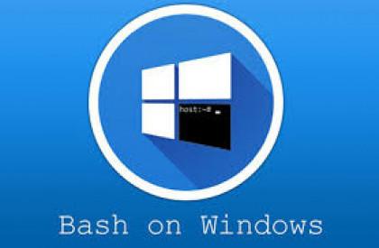 استخدام Bash على ويندوز