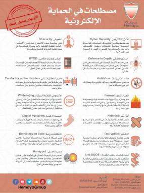 مصطلحات في الحماية الإلكترونية